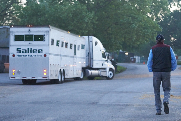 Before dawn at Belmont, Shirreffs meets the truck carrying Coz. Photo by Kyle Acebo.