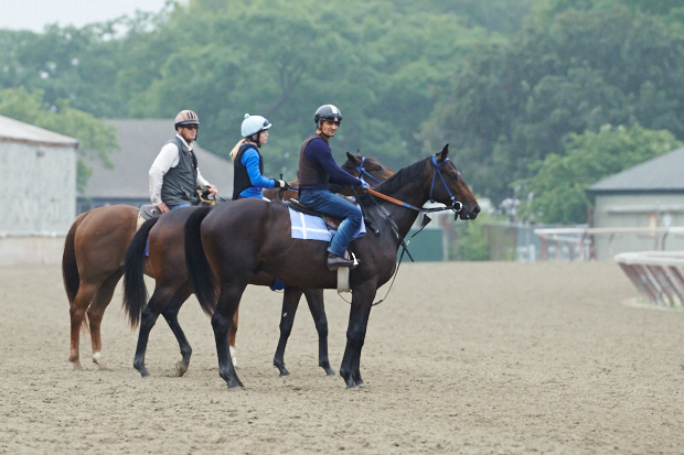 Shirreffs, on his horse Tug, accompanies Coz on the track. Photo by Kyle Acebo.
