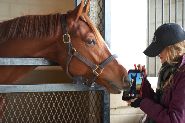 Ziconic and Zenyatta FaceTime.