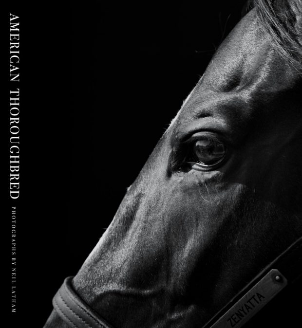 American Thoroughbred, the book.