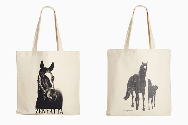 New canvas totes.
